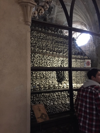 There were four enclosed sections within the church that housed an impressive amount of skulls and bones.