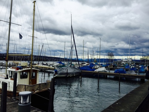One of our first stops on the tour was along Lake Zurich to admire the view and take a bathroom break.